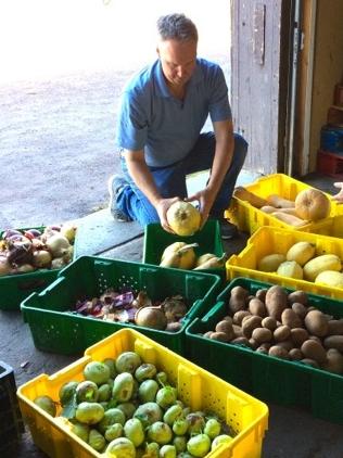 Jim produce